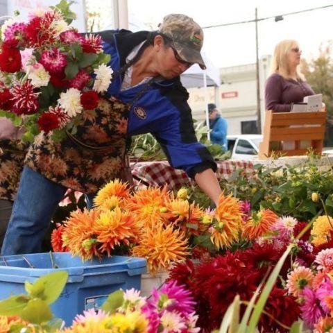 Lents International Farmers Market
