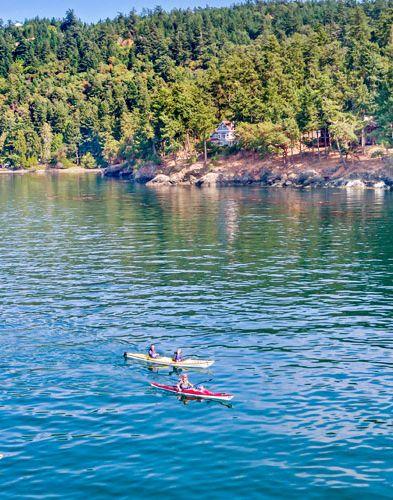 Kayak Inn Tours