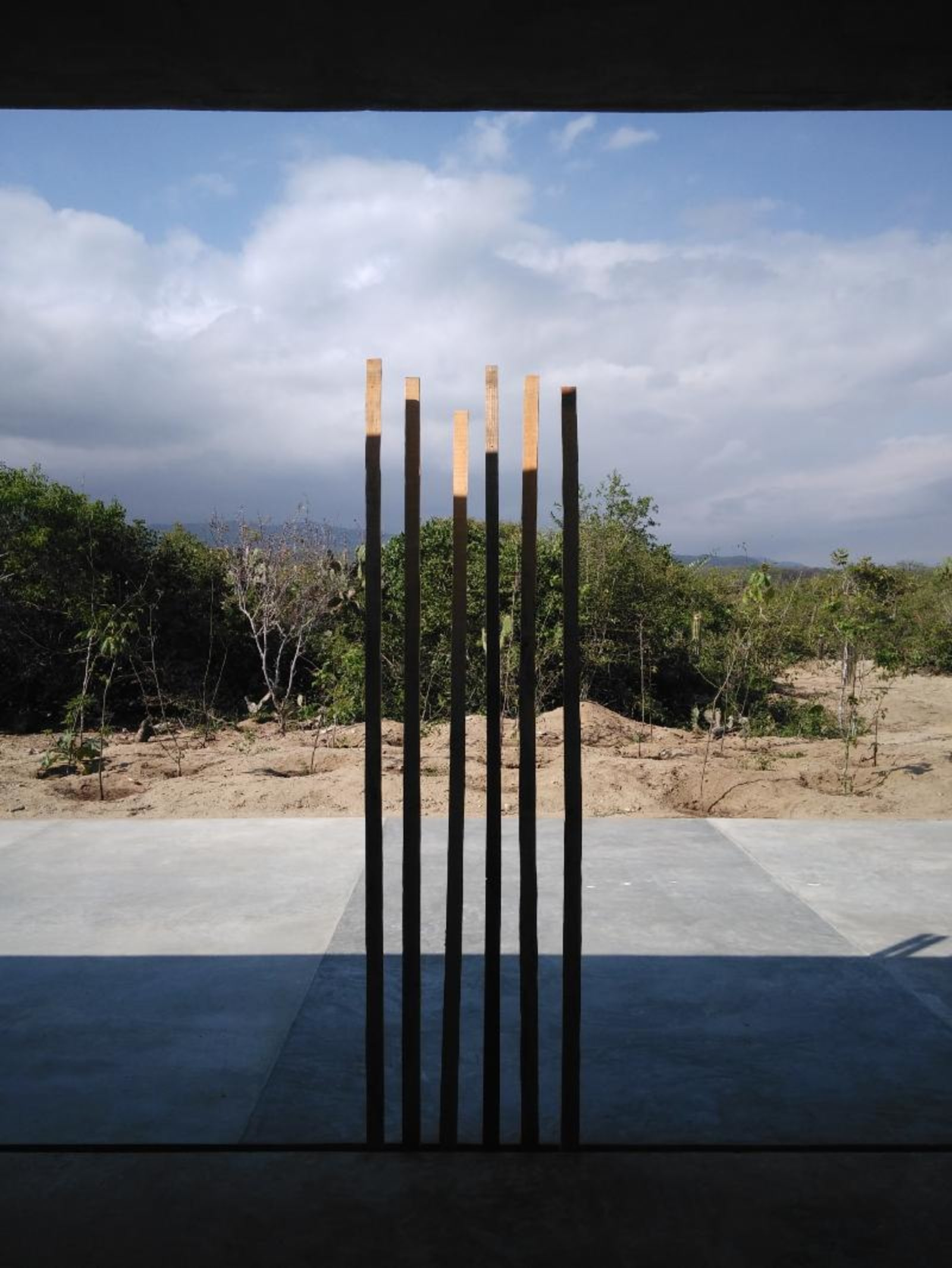woods - in casa wabi, six long wood pieces are standing by themselves in front of a cement floor and sand and mexican plants and then the mountain behind - wood - paul lahana
