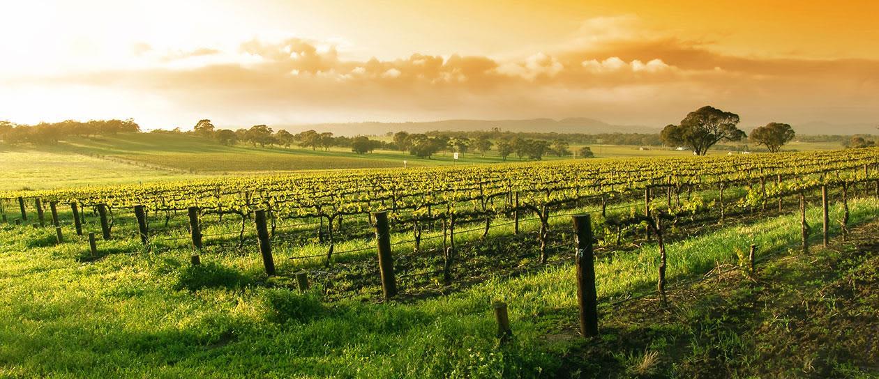Lompoc Wine Trail Wine Ghetto at California