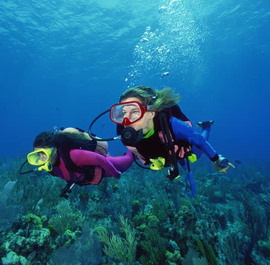 Have a Cabo Snorkel & Sea Adventure of Cabo San Lucas