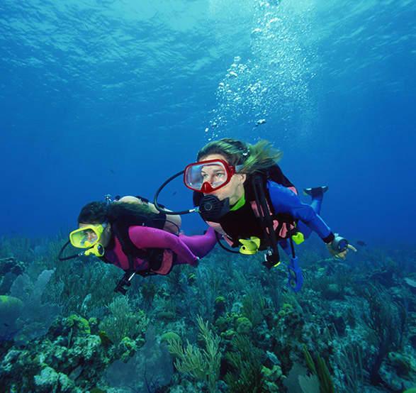 Snorkel y Aventura en el Mar de Cabo San Lucas