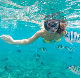 Snorkeling en Cabo Pulmo