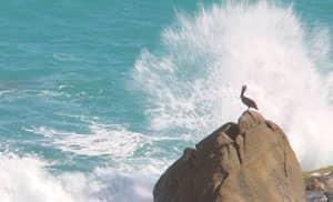 Grand Velas Los Cabos
