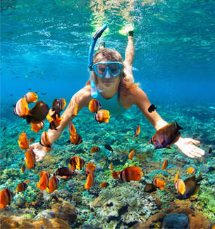 Snorkel, Kayaks y Boogie Boards