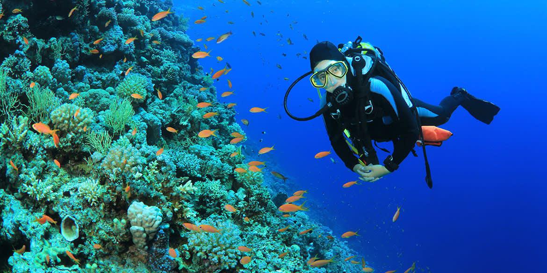 Grand Velas Riviera Maya offers Snorkel Tour