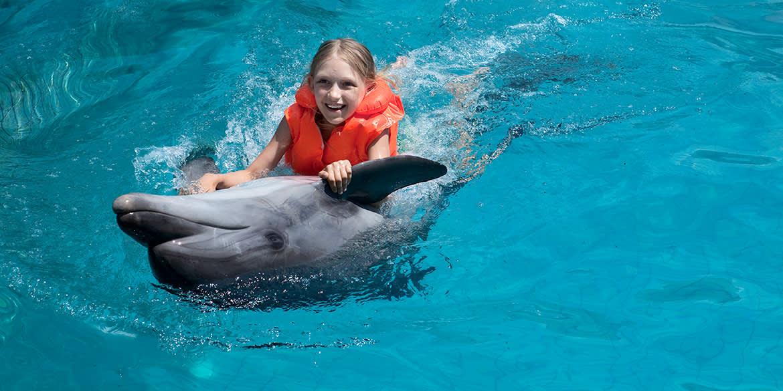 Grand Velas Riviera Maya - Swim with Dolphins