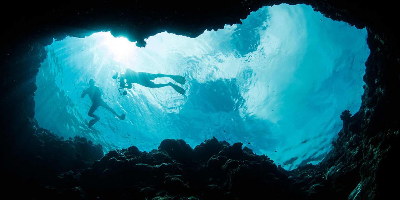 Riviera Maya Resort offers Sea Trek