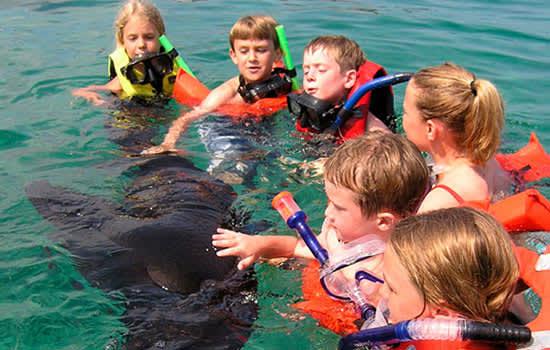 Aventura Privada de Snorkel en Riviera Maya