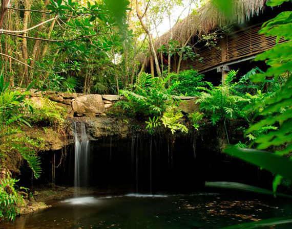 Despierte su creatividad mientras captura los claroscuros de la exuberante Riviera Maya, guiado por un fotógrafo profesional de Safari.