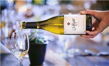 Allegretto Vineyard Resort Paso Robles - Allegretto Wines