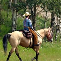 Paso Robles Horse Park