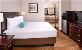 Best Western International Drive, Florida - King Room