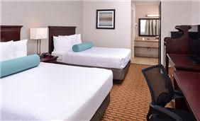 Best Western International Drive, Florida - Standard Room