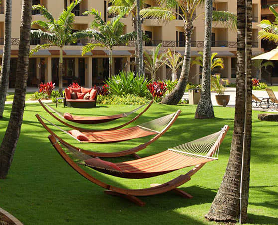 Management Services of Davidson Hotels & Resorts