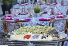 Catering - salmon