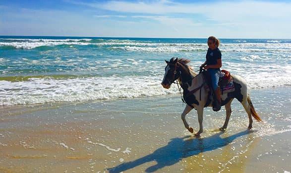 Equestrian Adventures at Daytona Beach, Florida