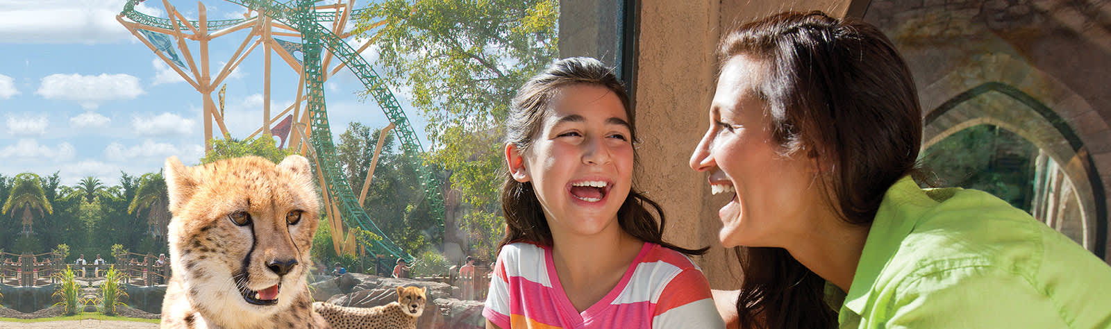 Busch Gardens Tampa at Florida