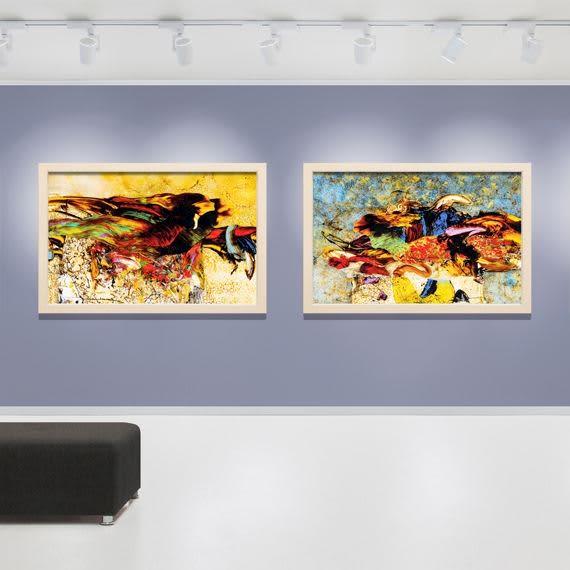 The MoMA Newyork