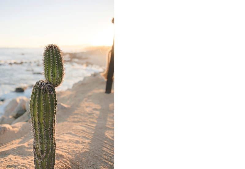Reasons to Stay at El Encanto Resort at Hacienda Encantada, Baja California Sur