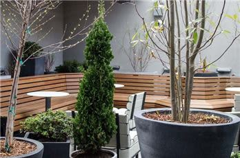 Freepoint Outdoor Space.Credit- Rachel Leah Blumenthal
