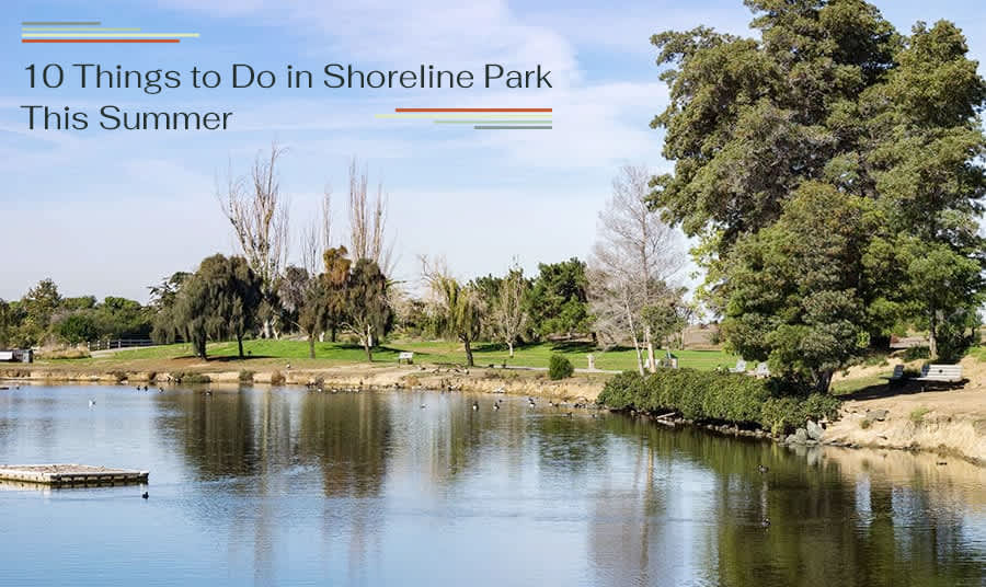 10 Things to Do in Shoreline Park This Summer