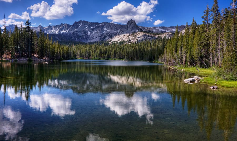 Fun Things to do in Mountain view this summer