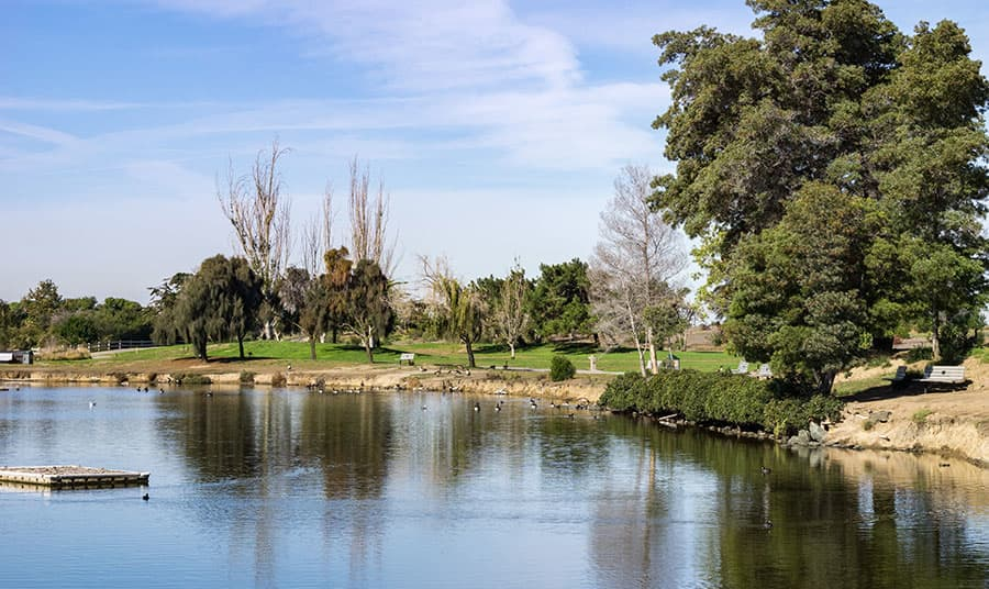 How to Spend a Day with the Kids at Shoreline Park in Mountain View