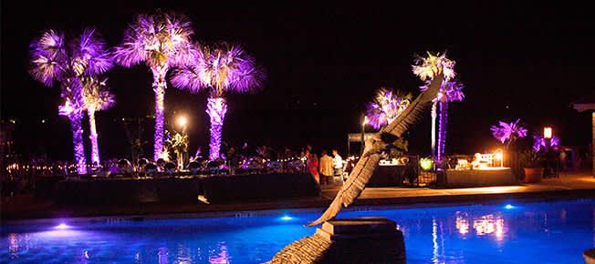 Birthday Night & Trivia Nights of Horseshoe Bay Resort