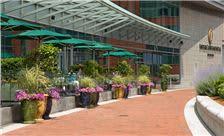 Intercontinental Boston - Miel Terrace