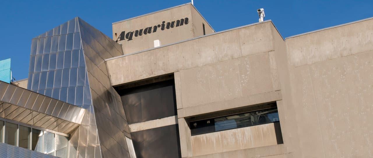 Boston New England Aquarium, Massachusetts