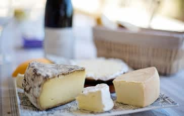 Boston Events - Boston Beer and Cheese Fest: Craft Brews and Artisan Cheese