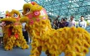 Boston Events - Lunar New Year Celebration at the Museum of Fine Arts