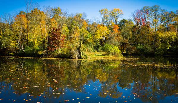 Delaware & Raritan Canal State Park Princeton