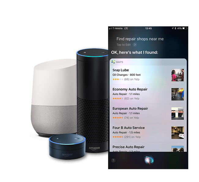 consumers search with voice