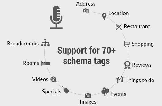 Schema Tags on Milestone CMS