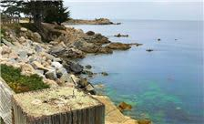 Pacific Grove Area