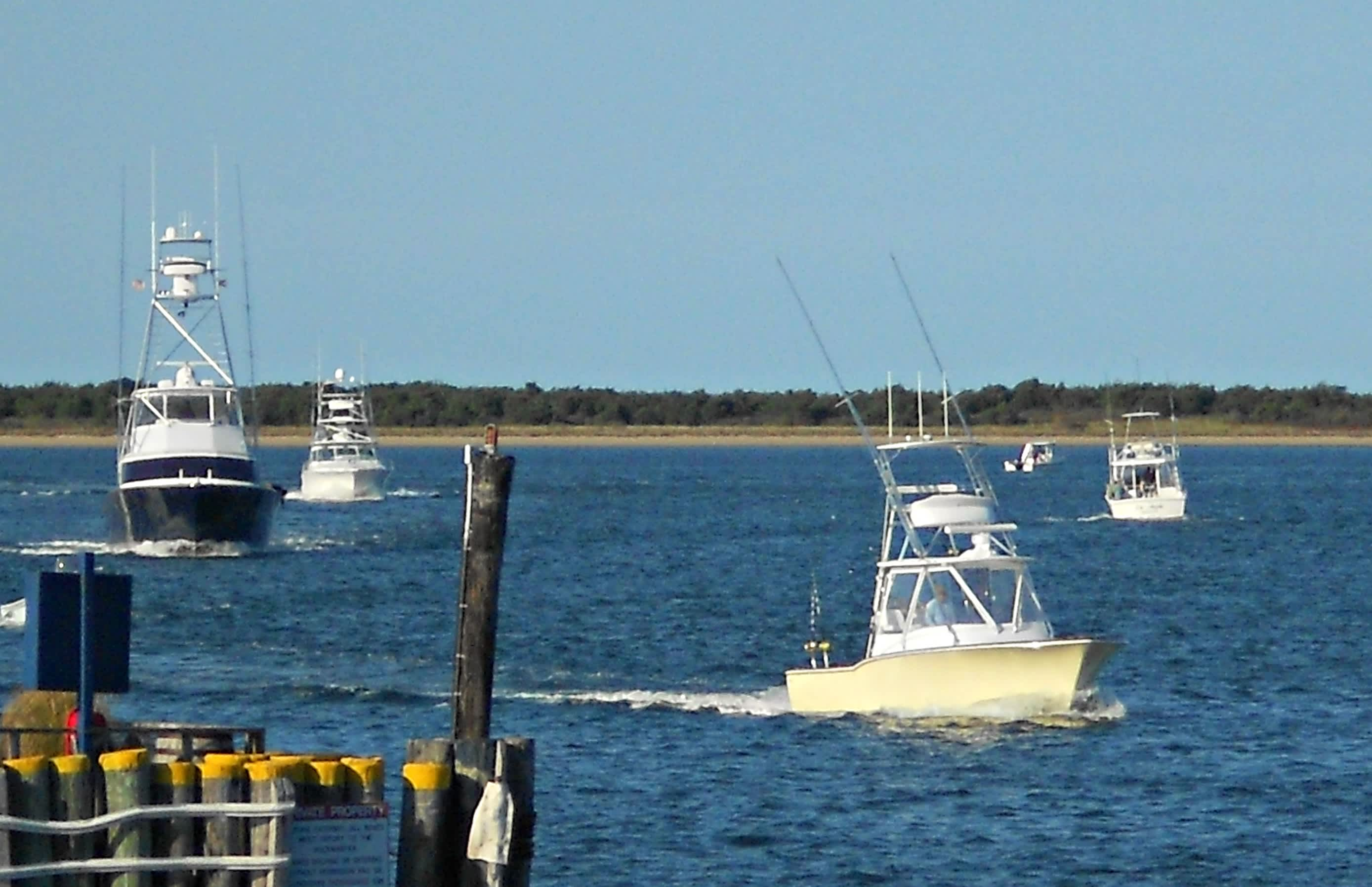 nantucket bluefin blast