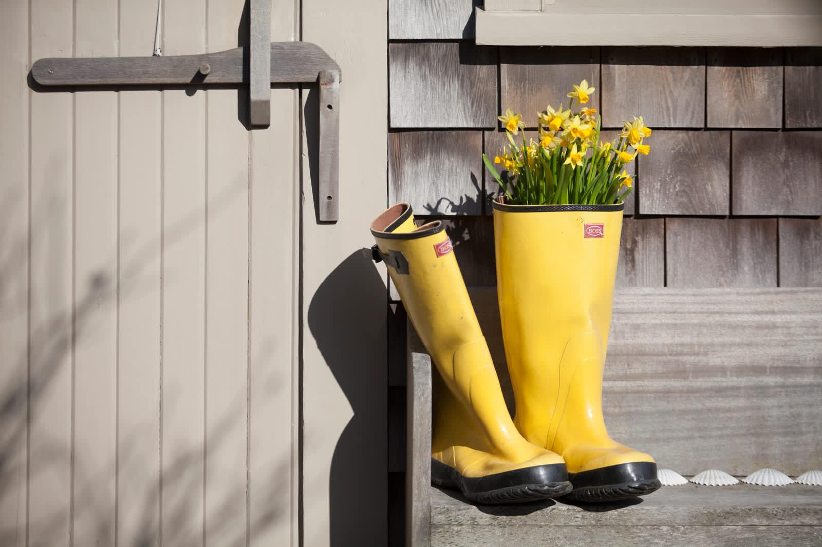 Daffodils Boots