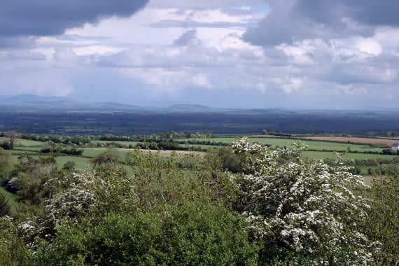 Ireland_-_Plains_of_South_Kildare