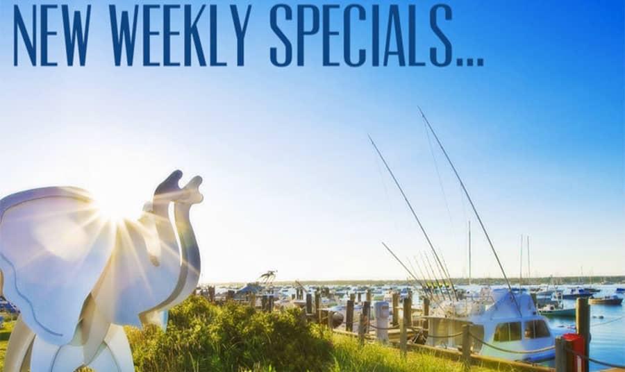 Deal Alert: Weekly Specials!