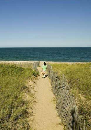 Pet Friendly Facilities available in Nantucket Island Resorts