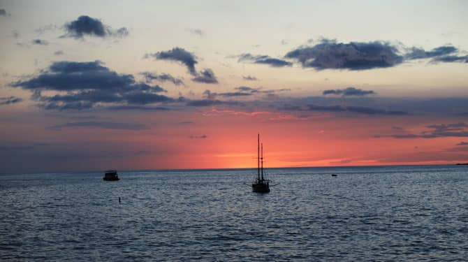 Hawaii Marlin Tournament Special