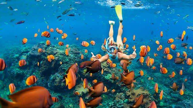 Molokini Snorkel of Hawaii