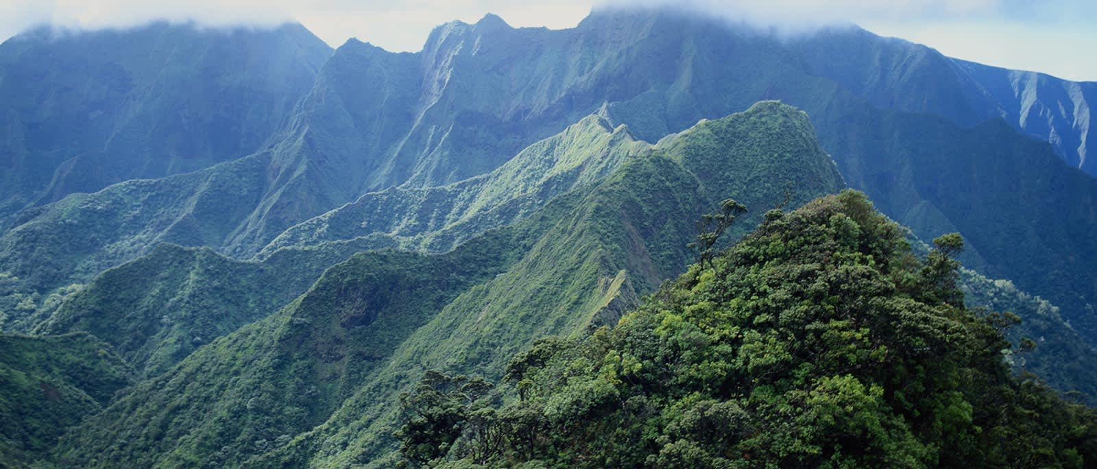 Iao Valley State Monument at Hawaii
