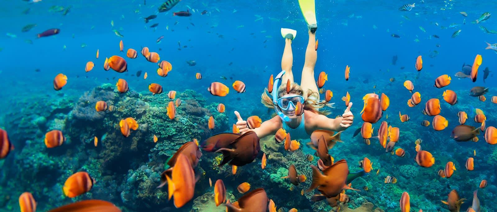 Molokini Snorkel in Maui