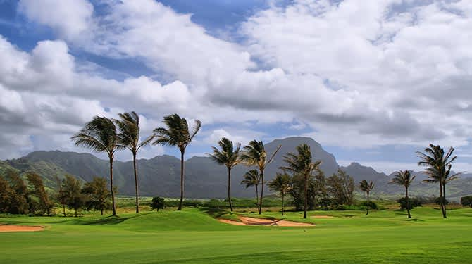 Partner Offers of Maui Hotel