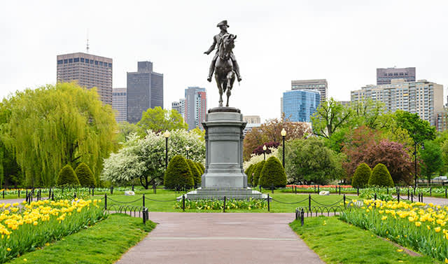 The Public Garden at Massachusetts
