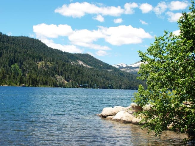 Donner Lake Run