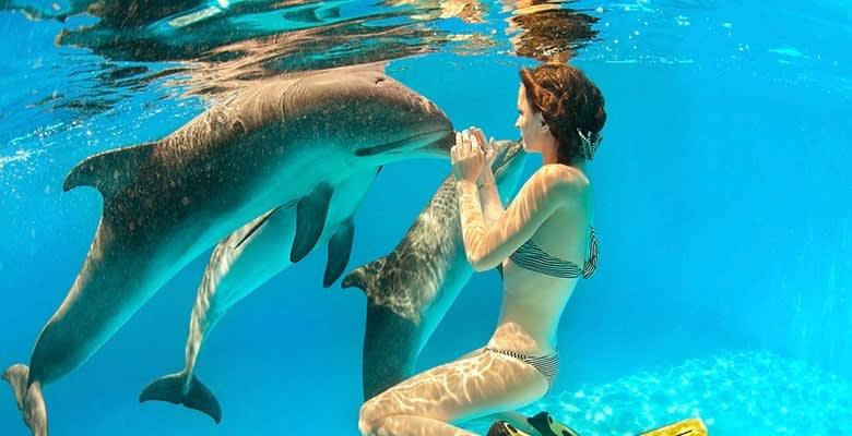 Delphinus Riviera Maya, Playa del Carmen